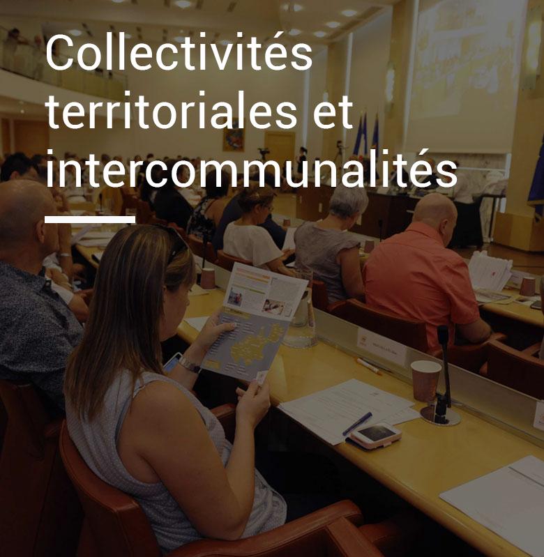 Collectivités-territoriales-et-intercommunalités-Schneider-Avocats-Montpellier